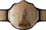 An image of the DAW World Heavyweight Championship.