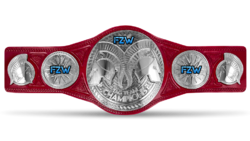FZW Havok Tag Team Championship.png