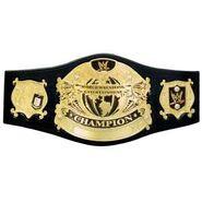 RWA Championship Belt image