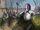 Loras Tyrells Angriff Drachenstein Paolo Puggioni.jpg