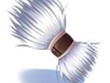 Touffe de Poils de Moogliz