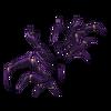Skarpetki Queen spider 10
