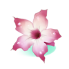 Fleur rare