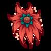 Kwiat Shy Nenuphar 7