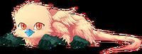 Alcopafel Baby
