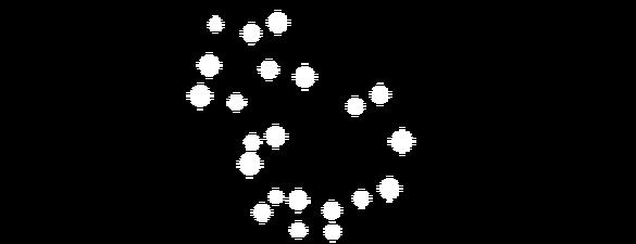 ŚM2018 Liclion 1