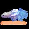 Ryba-ważka