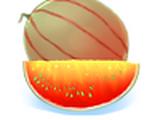 Melon Épicé