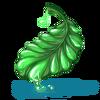 Liść sukulentu