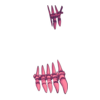 Buty skeleton witch 9