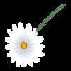 https://www.eldarya.com.br/static/img/item/player/web_hd/d4449dd4b00d3218ebc054919edf814f
