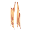 Narzutka Mysterious Enchantress 5