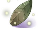 Folha de coca encantada