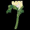 Kwiat Summer Faery 05