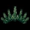 Korona Skeleton Witch 5