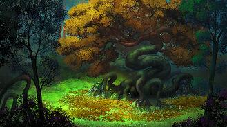 Krzywe drzewo