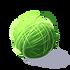 Jedwab Catatapillar