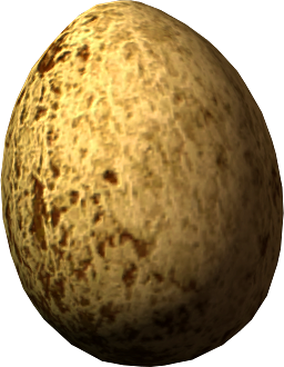 Hawk's Egg
