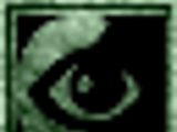Night-Eye (Morrowind)