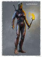 Kobieca zbroja Mrocznego Bractwa (Conceptart) by Ray Lederer