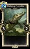 Stalking Crocodile