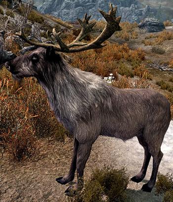 Cervo (Skyrim)
