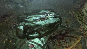 Кристаллическая пещера — мёртвый босмер