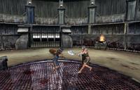 Arena Cesarskiego Miasta (walka) (Oblivion)