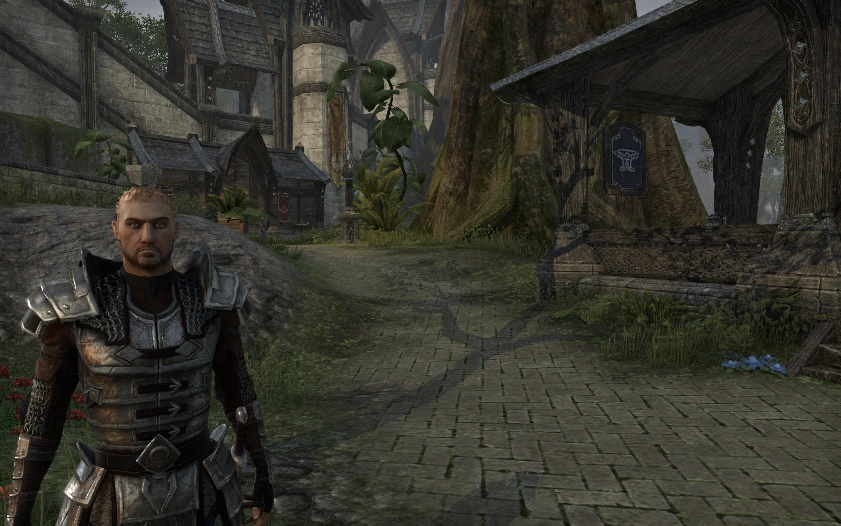 Steel Armor (Online)
