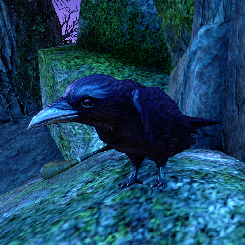 Duke of Crows
