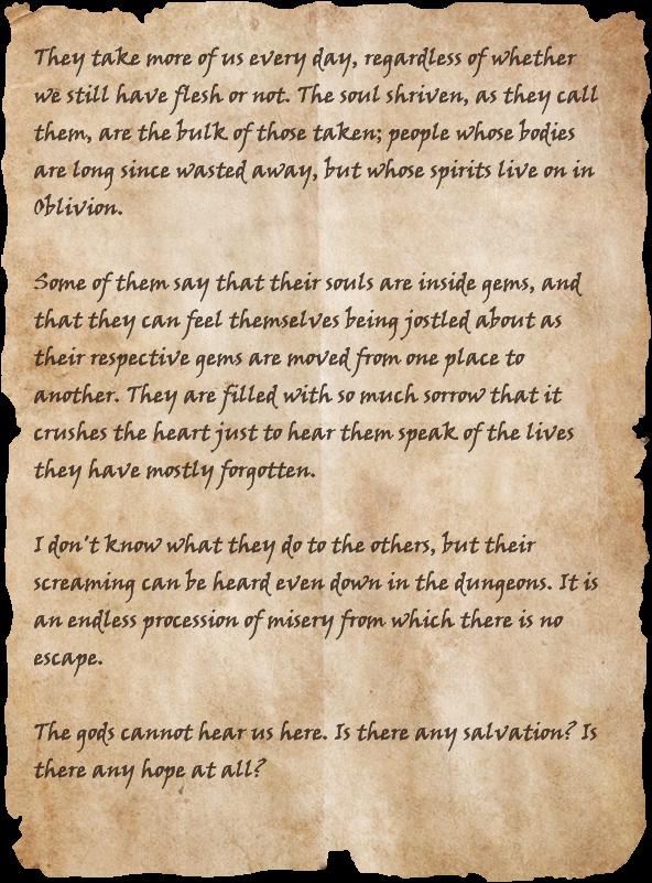 Slave's Diary