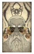 Ancestor Moth card back