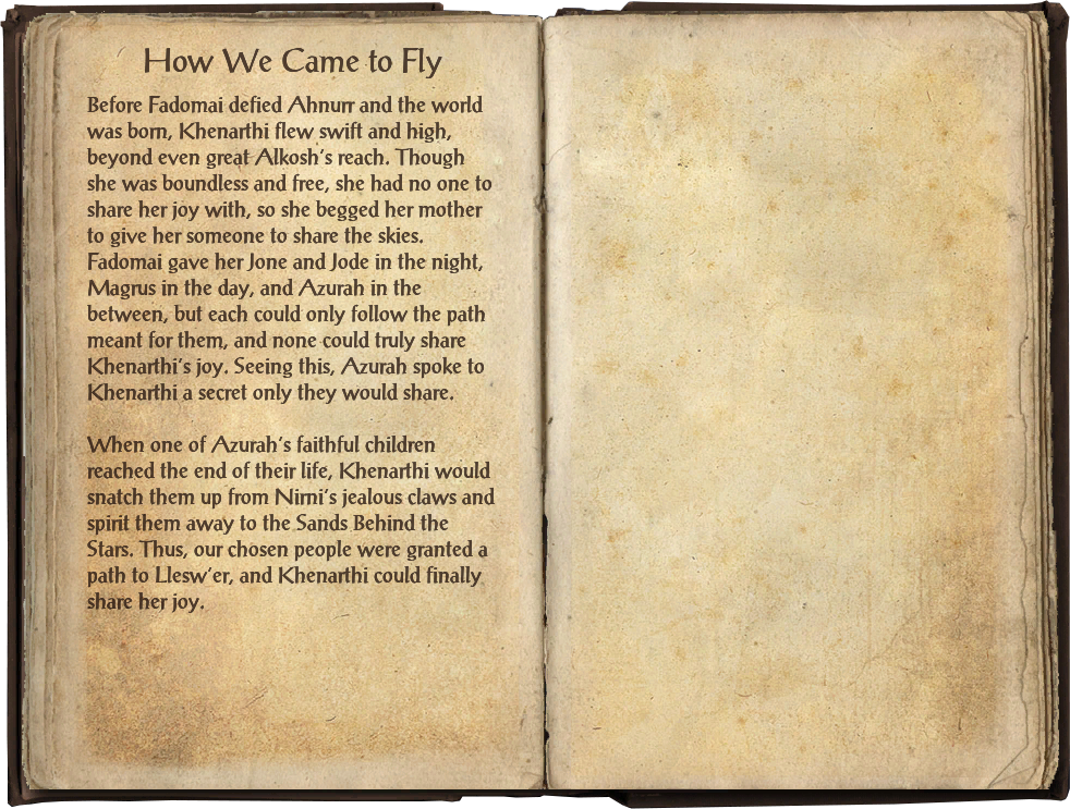 How We Came to Fly