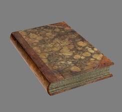 Книга (Oblivion) 8.jpg