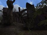Maelkashishi (Morrowind)