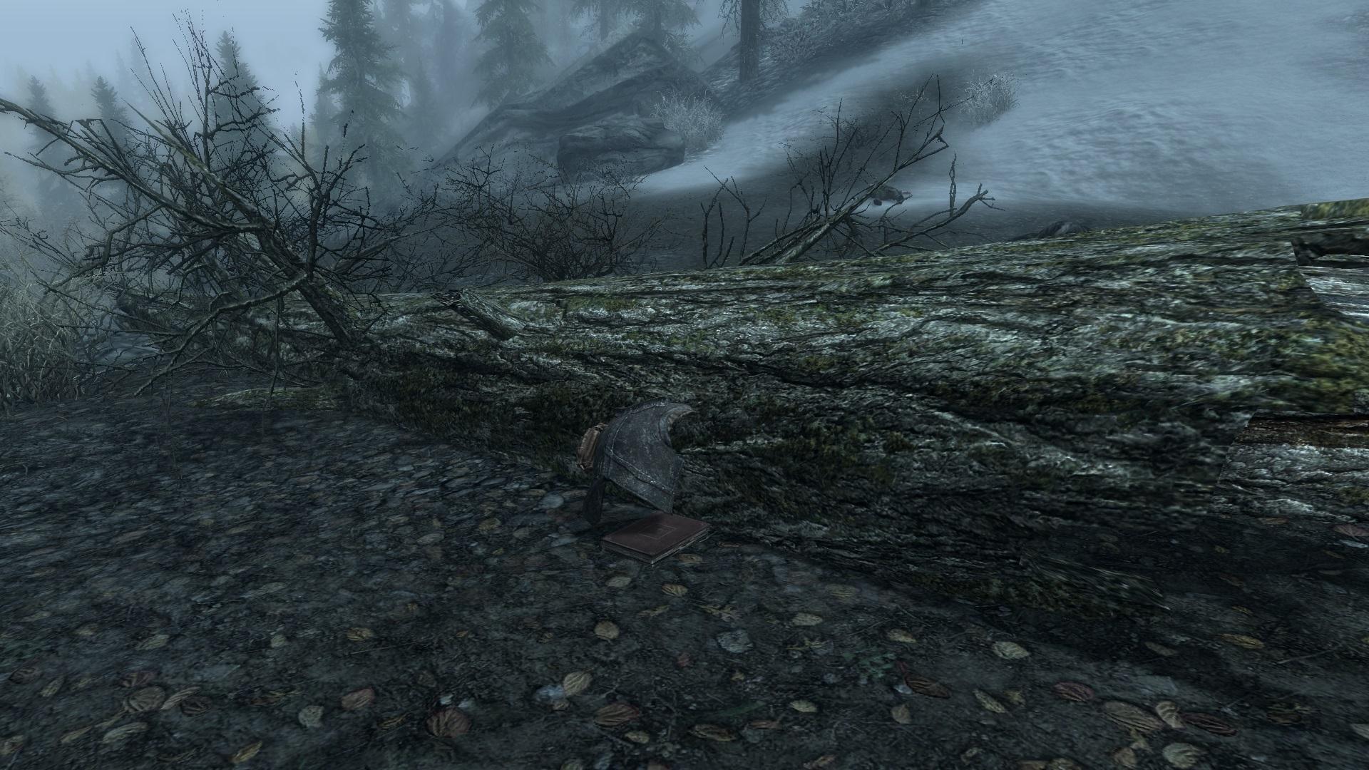 Forest Stash