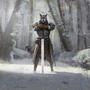 Strażnik karawany (Legends).png
