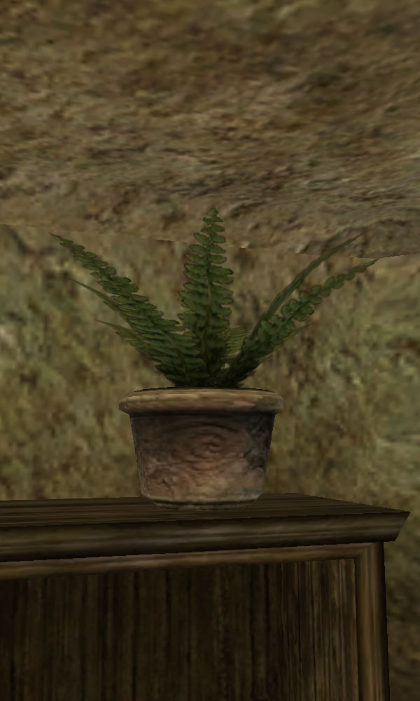 Charles the Plant