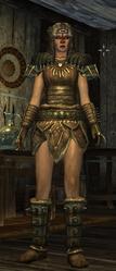 Stormcloack Officer Armor Female