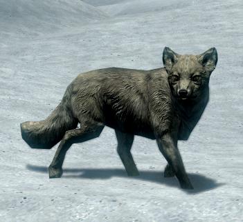 Снежная лисица