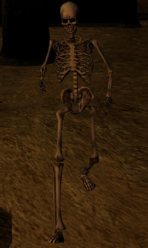 Crippled Skeleton