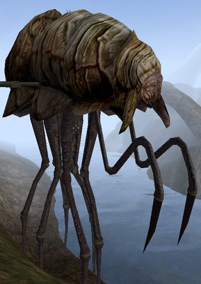 Łazik (Morrowind)