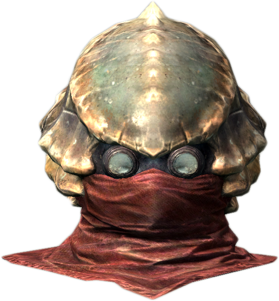 Chitin Helmet (Dragonborn)