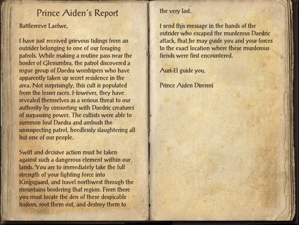 Prince Aiden's Report