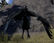 ESO Wrothgar Harpy