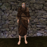 Простая Мантия 1 (Morrowind) (муж)