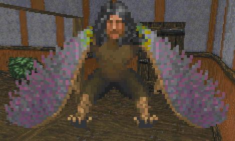 Harpy (Daggerfall Creature)