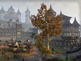 Città di Daggerfall