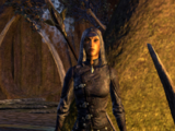Fists of Thalmor