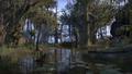 Murkmire In-game 3